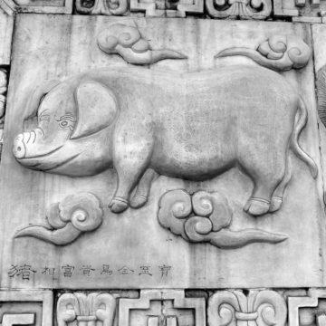 Horóscopo chino: los orígenes del elemento agua